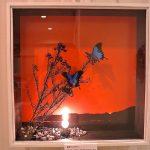 蝶のオブジェ。ガラスドーム内での架空自然観。